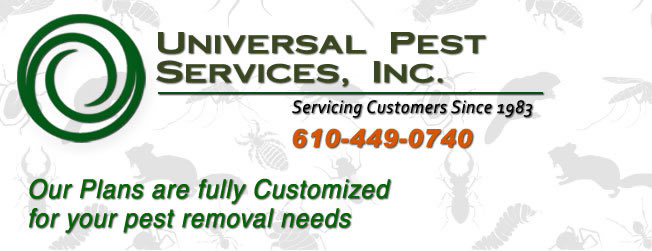 residential & commercial pest control